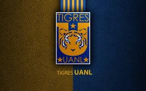 Picture wallpaper, sport, logo, football, Tigres UANL