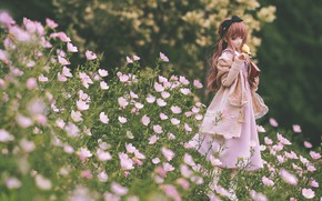 Picture flowers, doll, dress, meadow, girl, book, bird