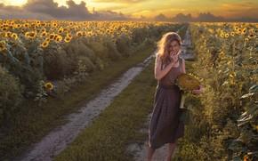 Picture road, field, girl, sunflowers, sunset, nature, barefoot, dress, barefoot, David Dubnitskiy