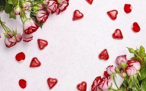 Picture flowers, roses, hearts, valentines day