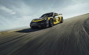 Picture asphalt, coupe, Porsche, Cayman, 718, 2019, black-yellow, GT4 Clubsport