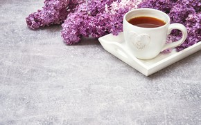 Picture flowers, tea, bouquet, Cup, lilac