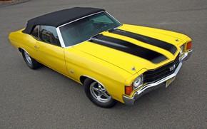 Picture Chevrolet, Classic, Chevelle, Convertible, Chevelle SS