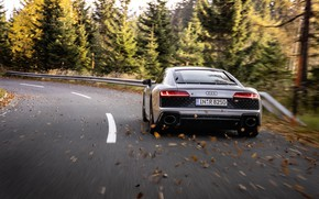 Picture autumn, Audi, speed, supercar, Audi R8, rear view, Coupe, V10, 2020, RWD