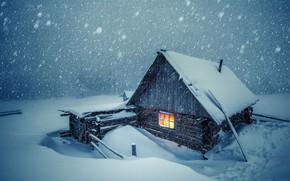Picture winter, snow, cold, cabin