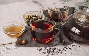 Picture tea, kettle, honey, Cup