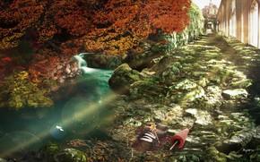 Picture autumn, umbrella, tree, shoes, ruins, pond, breeze