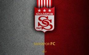 Picture wallpaper, sport, logo, football, Turkish Superlig, Sivasspor