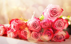 Picture table, background, roses, bouquet, bokeh