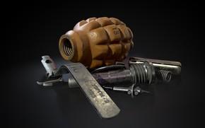 Picture Russia, Defensive grenade, Pineapple, F-1, В разобранном виде