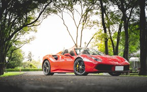 Picture trees, red, sports car, Ferrari 488 Spider