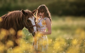 Picture summer, girl, nature, pose, horse, dress, bokeh