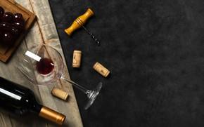 Picture wine, glasses, grapes, tube, bottle