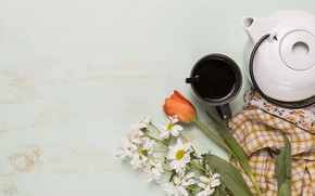 Picture flowers, kettle, tulips