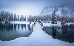 Picture winter, bridge, Park