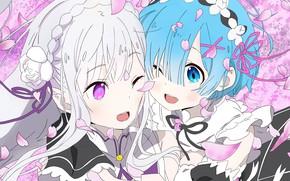 Picture girls, petals, Emilia, From scratch, REM, Re Zero Kara Hajime Chip Isek Or Seikatsu