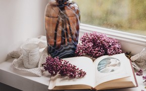 Picture window, book, vase, lilac