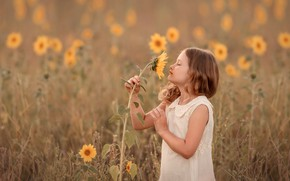 Picture summer, sunflower, girl