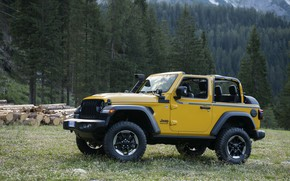 Picture yellow, meadow, SUV, 4x4, Jeep, Mopar, 2019, Wrangler Rubicon 1941