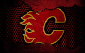 Picture wallpaper, sport, logo, NHL, hockey, Calgary Flames