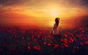 Picture field, summer, girl, the sun, clouds, light, landscape, sunset, flowers, pose, rendering, back, view, Maki, …