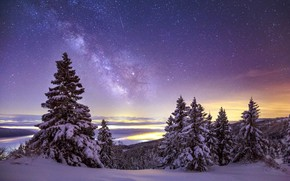 Picture The sky, Winter, Mountains, Snow, Stars, The Milky Way, Spruce Trees