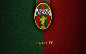 Picture wallpaper, sport, logo, football, Italian Seria A, Ternana
