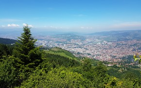 Picture forest, landscape, the city, away from the hustle and bustle