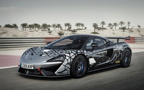 Picture coupe, McLaren, track, 2020, V8 twin-turbo, 620R, 620 HP, 3.8 L.