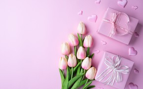Picture flowers, holiday, tulips, Podarok