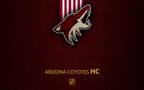 Picture wallpaper, sport, logo, NHL, hockey, Arizona Coyotes