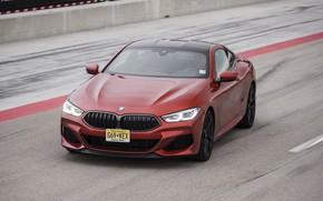 Picture asphalt, coupe, BMW, track, 2018, 8-Series, 2019, dark orange, M850i xDrive, Eight, G15