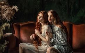 Picture look, light, girls, room, hair, Anastasia Barmina