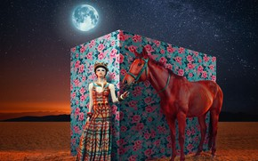Picture animal, the moon, woman, stars, DURBAN JULY
