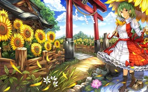 Picture summer, girl, sunflowers, Touhou