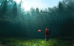Picture Water, Figure, People, Fish, Fish, Light, Denis Loebner, by Denis Loebner, Crystalclear water, Clown Fish