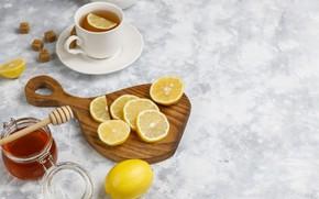 Picture lemon, tea, Cup, citrus, honey