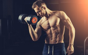 Picture muscle, muscle, bodybuilding, press, dumbbells, bodybuilder, abs, dumbbells, bodybuilder, dumbbell