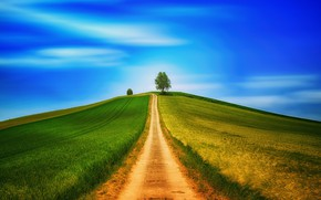 Picture road, field, tree, hill