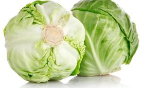 Picture white background, cabbage, white