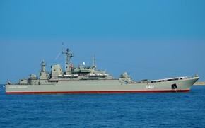 Picture ship, large, landing, the project 775, Kostyantin Olshansky