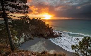 Picture sea, the sky, the sun, clouds, trees, rocks, shore, horizon