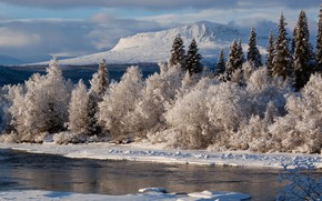 Picture winter, frost, snow, mountains, river, frost