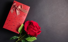 Picture flowers, gift, rose, red, love, black background, red, flowers, romantic, gift, roses