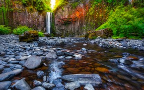 Picture greens, forest, trees, rock, stream, stones, waterfall, USA, Oregon, Abiqua Falls