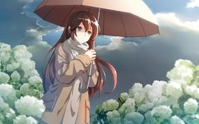 Picture girl, flowers, umbrella, hydrangea