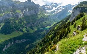 Picture Nature, Mountains, Lake, Switzerland, Forest, Alps, Landscape, Sealeze