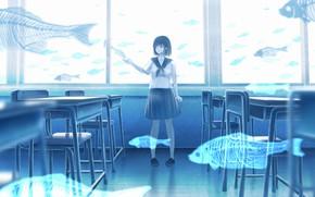Picture fish, class, schoolgirl, ghosts