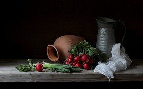 Picture greens, bow, still life, radishes