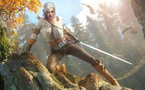 Picture Sword, The Witcher 3 Wild Hunt, The Witcher 3 Wild Hunt, CRIS, Cirilla Fiona Elen …